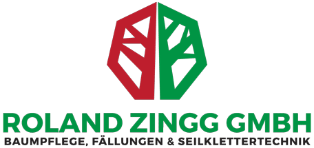 Baumpflege Zürich und Umgebung